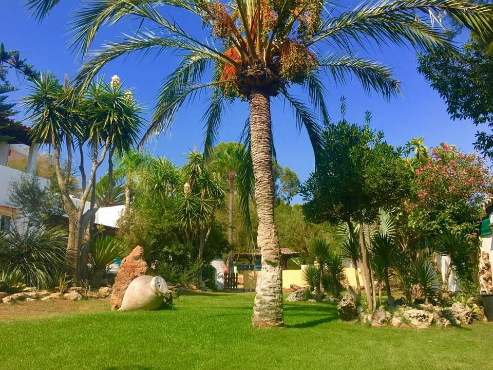 For Sale beautiful villa with a beautiful palm-tree garden -  San Rafael Ibiza